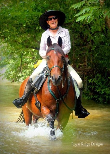 horse rider splashing crossing creek river